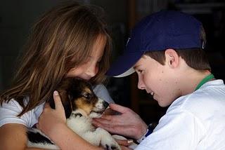 Our Adoption Process