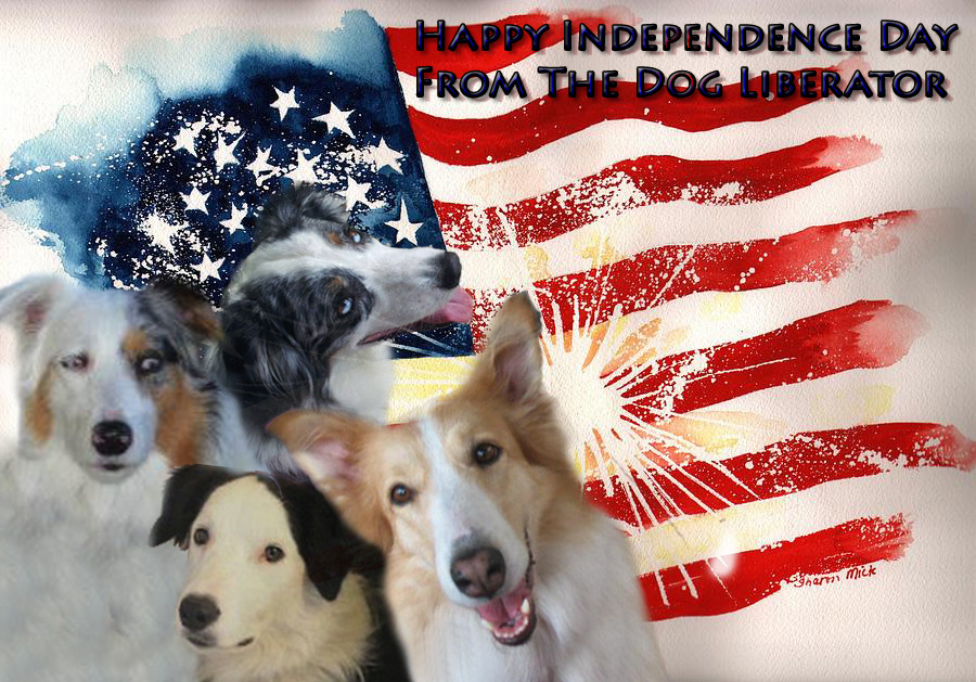How to Prepare for the 4th of July