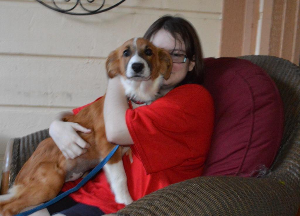 Amelia~Adopted