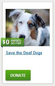 Sarah's Save the Deaf Dogs