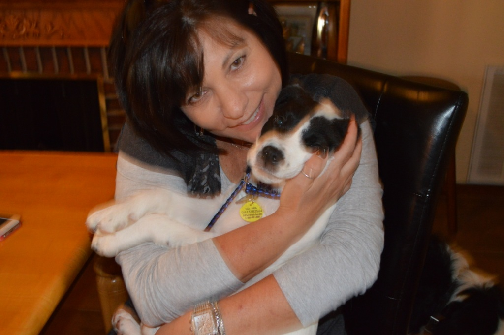 Pepito~Adopted