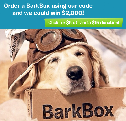 Bark Box – April Only