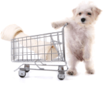 dog_shopping