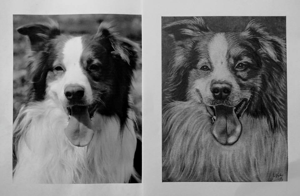 Pet Portraits to Support Rescue! (A Fun Fundraiser)