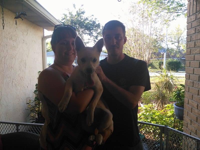 Quinn ~ Adopted!