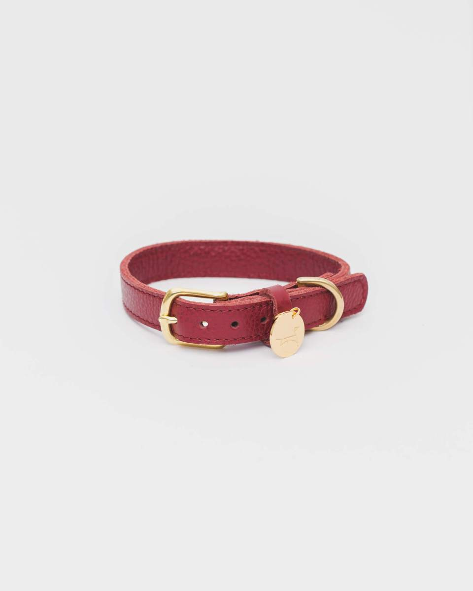 The Dog Musthaves - Collar Burgundy Small