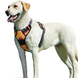 Eagloo Dog Harness