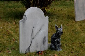 New Stone and Zombie Dog