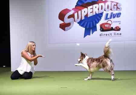The London Pet Show - SuperDogs Live