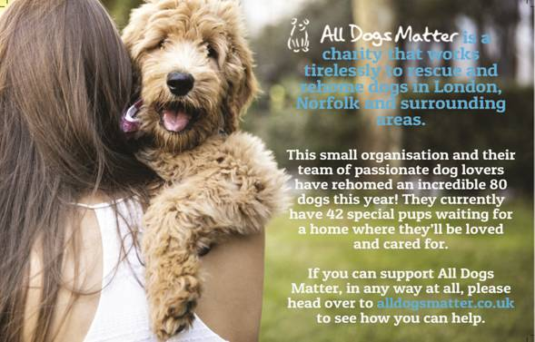 Pawpost Monthly Pet Box - All Dogs Matter Partnership