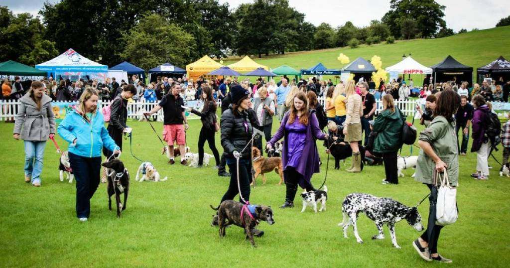 Judging at PupAid 2015 – Every Pup's a Winner!