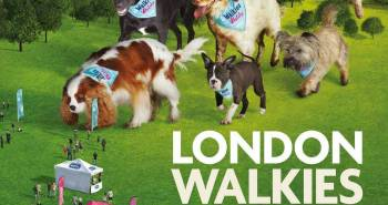 What's On Woofs - The RSPCA Big Walkies 2016