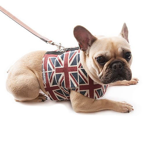 Mutts & Hounds Union Jack Linen Dog Harness - Patriotic Pooch