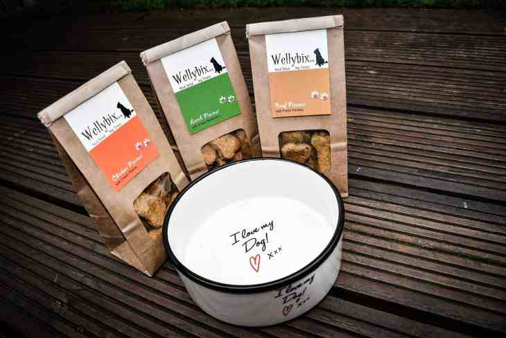 Wellybix Dog Biscuits Review