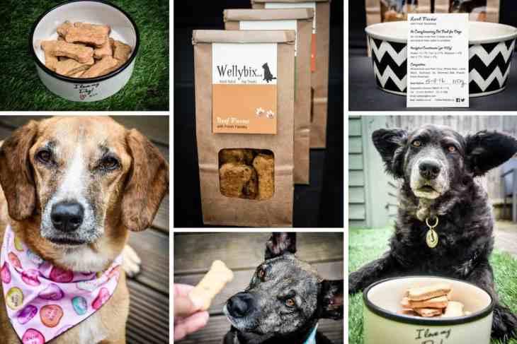 Wellybix Dog Biscuits 2 (2)