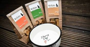 What Did We Think Of Wellybix Dog Biscuits-