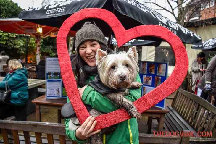 All Dogs Matter Valentines Walk-14