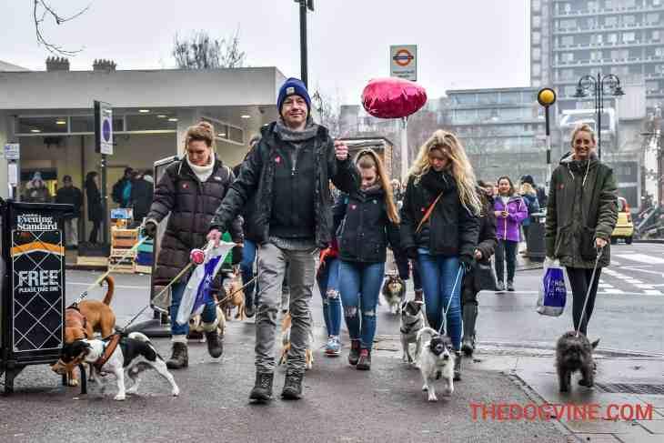 All Dogs Matter Valentines Walk-30