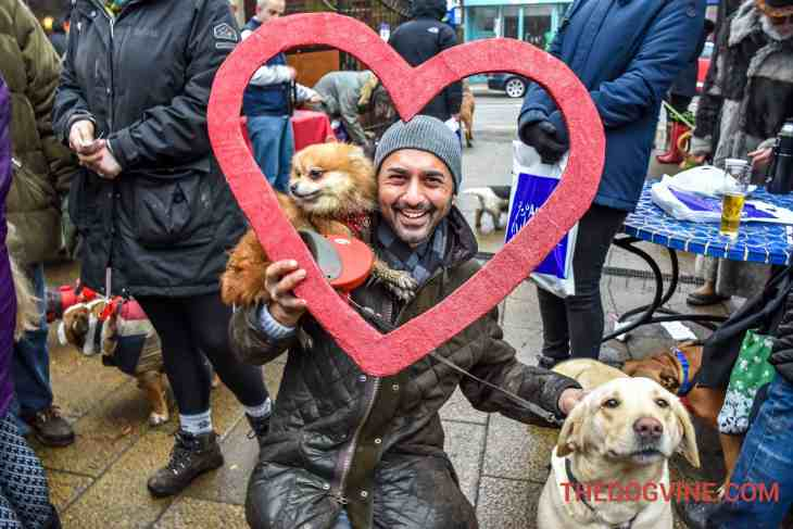 All Dogs Matter Valentines Walk-36