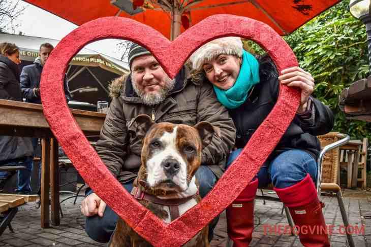 All Dogs Matter Valentines Walk-7