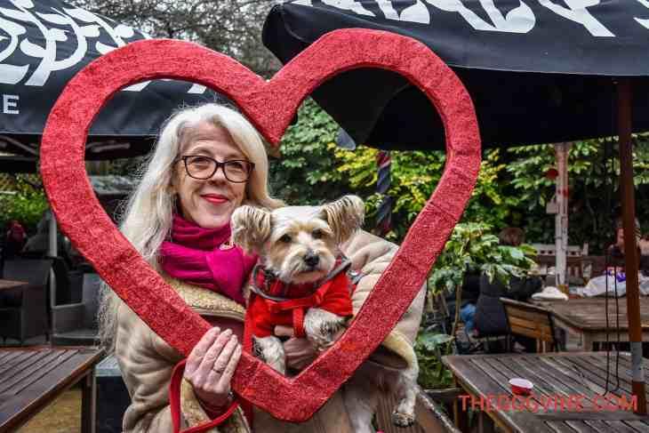 All Dogs Matter Valentines Walk-9
