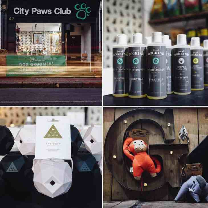The Dogvine Airbnb Insider Guidebook - City Paws Club