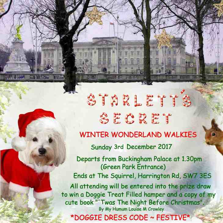 December 2017 Events Agenda For London Dogs - Starletts Secret Winter Wonderland Walkies