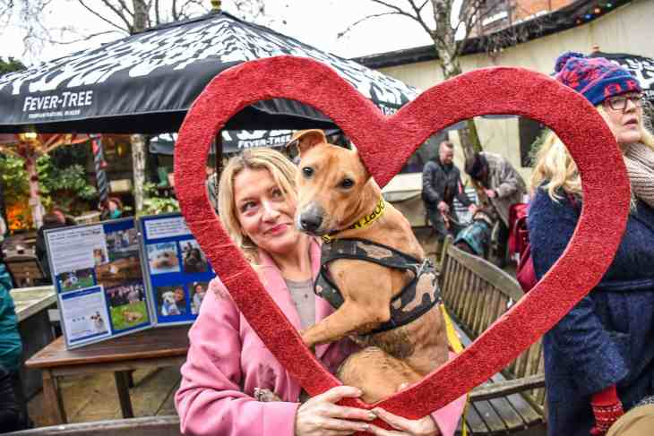 February 2018 - Dog Events in London Not To Miss 1