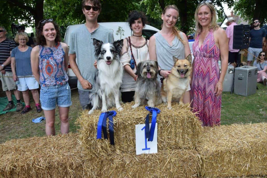 London Dog Shows - Kew Fete Dog Show