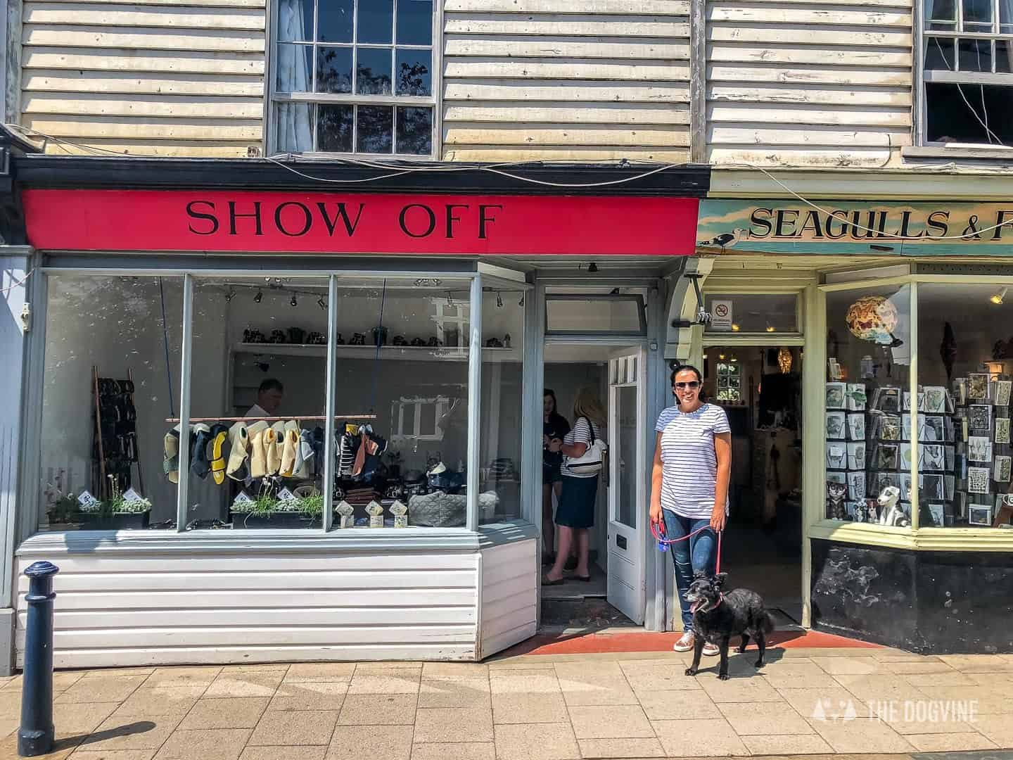 Dogs Day Out With Fetch & Follow On Tour In Dog-Friendly Whitstable 41