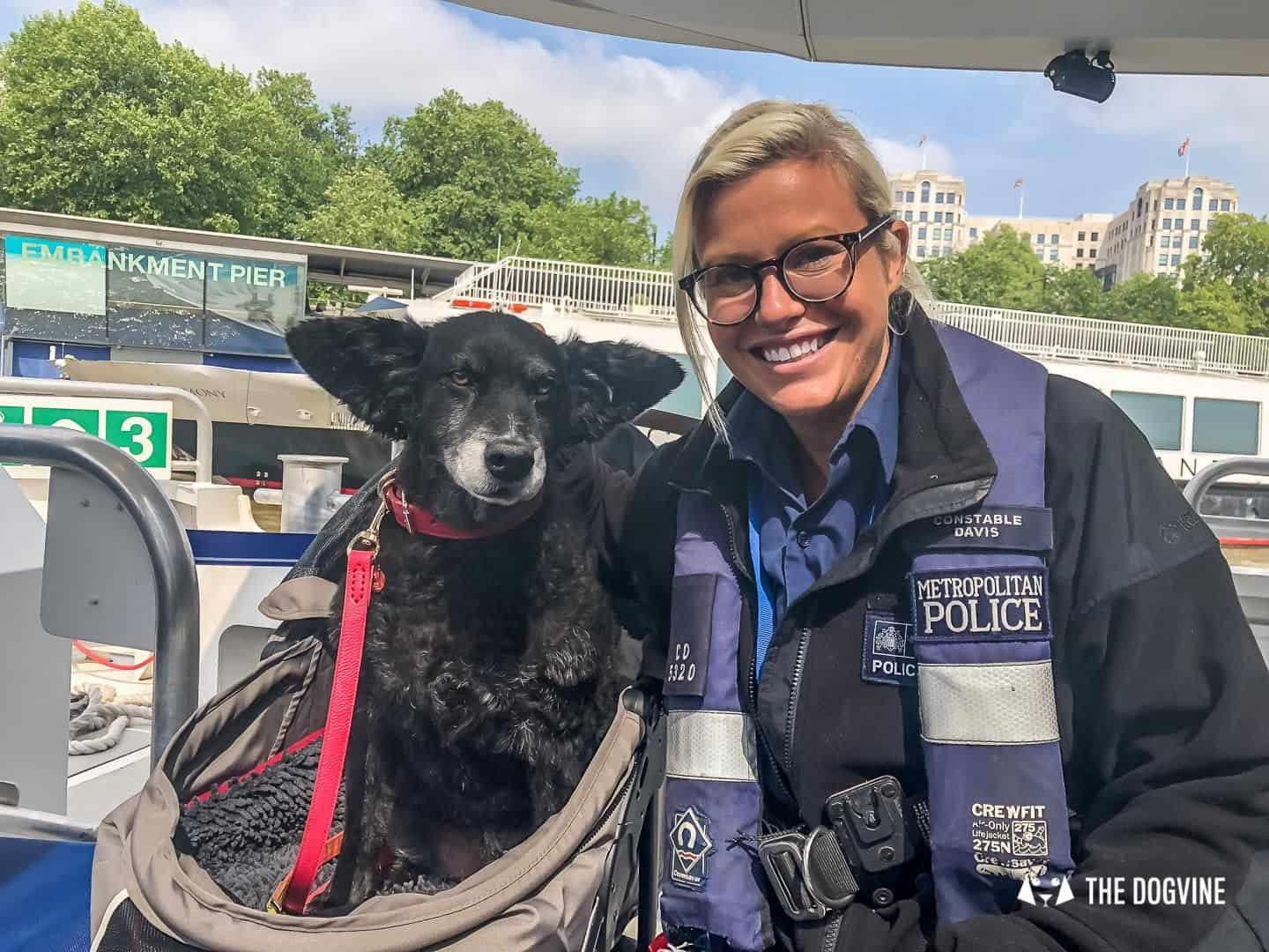 How To Get Around London With A Dog On The River Bus 10