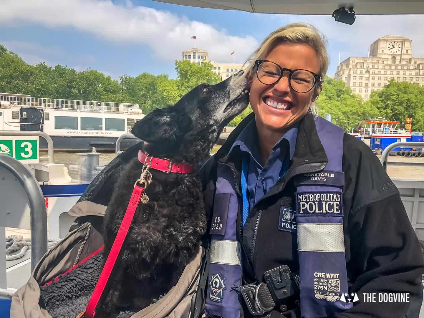 How To Get Around London With A Dog On The River Bus 11