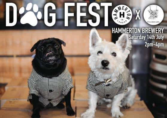 London Dog Events - Dogfest at Hammerton Brewery
