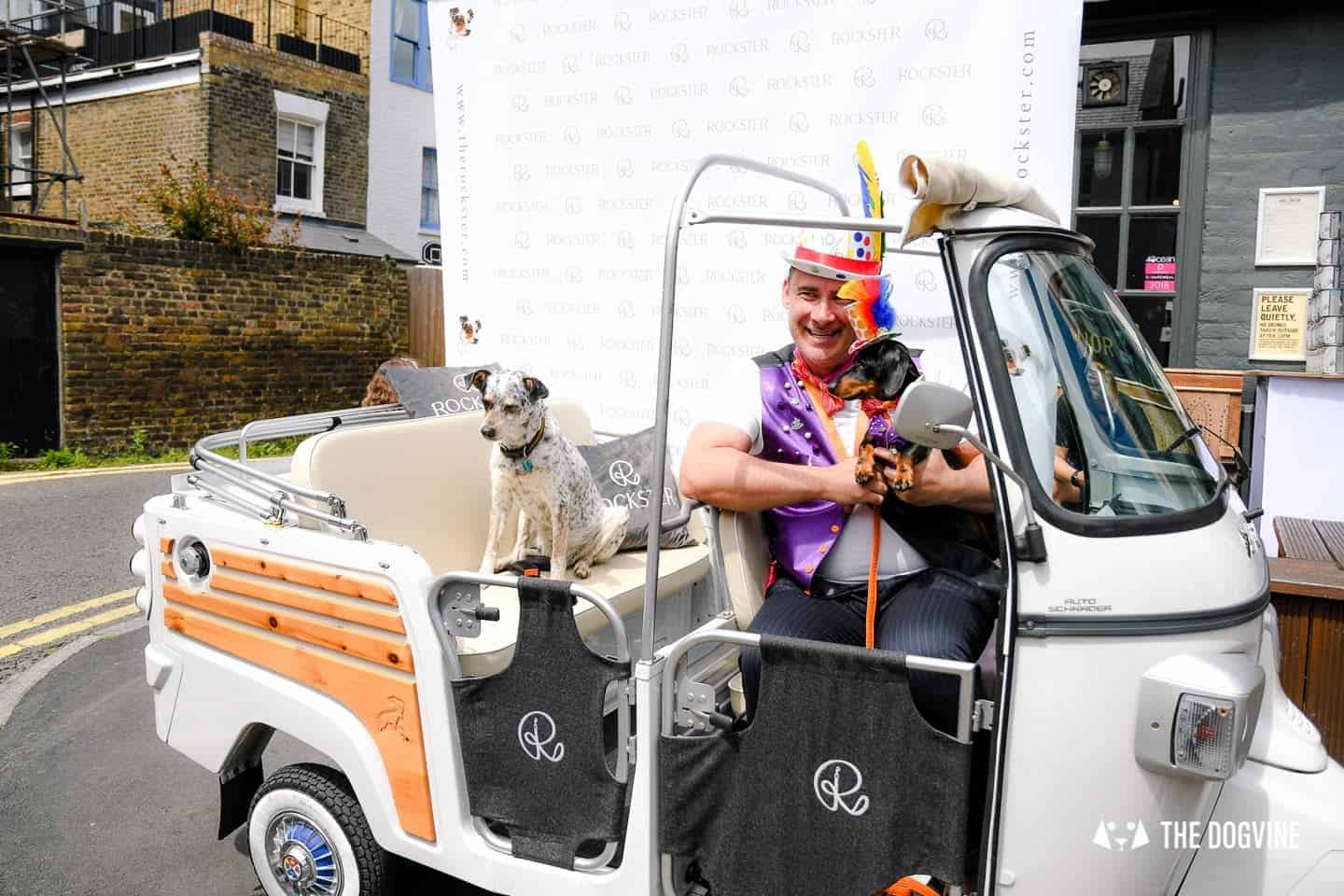 London's Best Dressed Dachshunds At Sausage Social London The Mad Hatters Tea Party 10