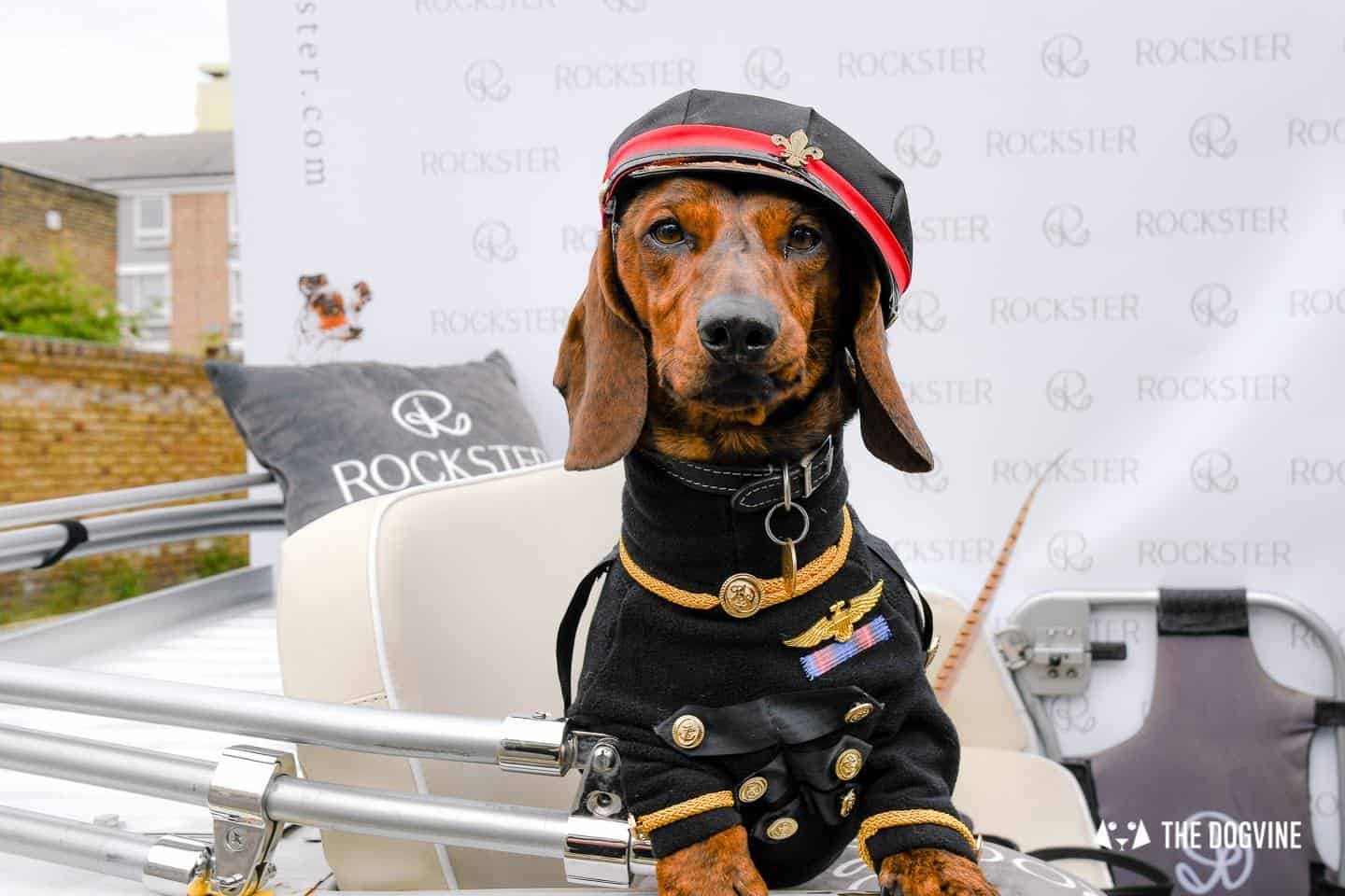 London's Best Dressed Dachshunds At Sausage Social London The Mad Hatters Tea Party 128