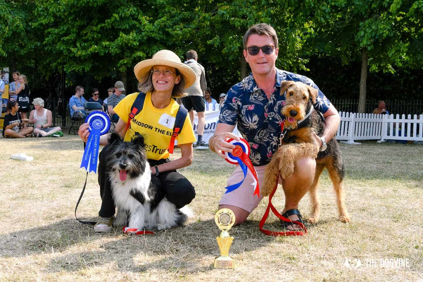 All Things Dog At The Canary Woof Dog Show 2018 24