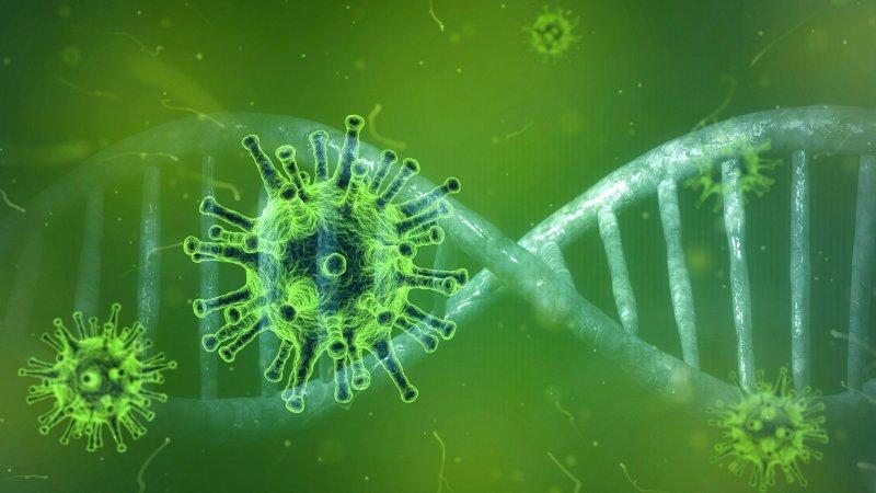 Qatar records 227 new coronavirus cases on 30 September