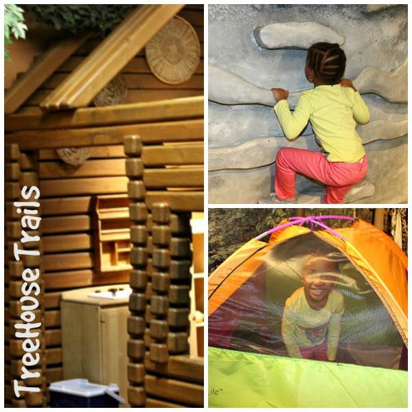Treehouse Collage