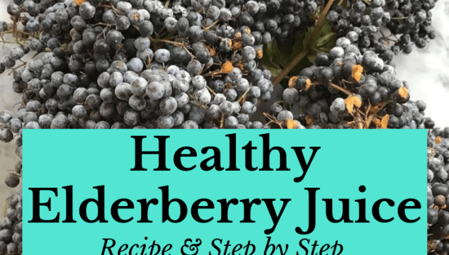 Elderberry Juice Canning Recipe & Step by step instructions
