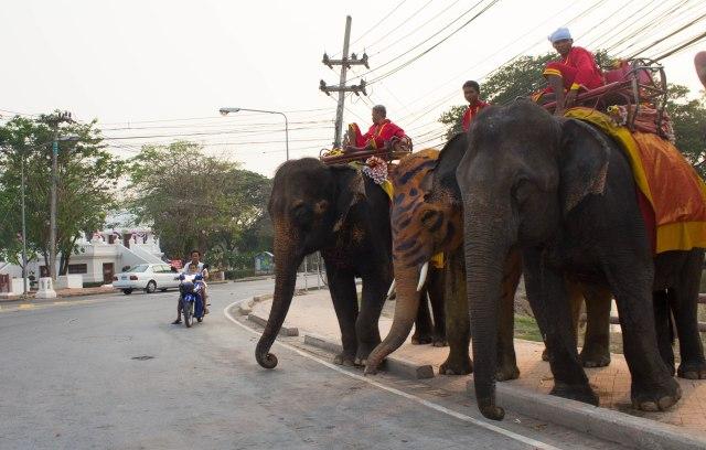 Ayutthaya with Burmese-44