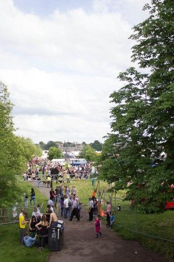 Strawberry Fair 2014-28