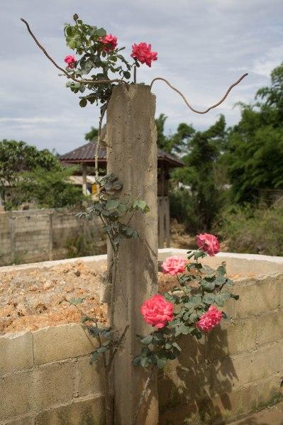 Laos Road Trip-64
