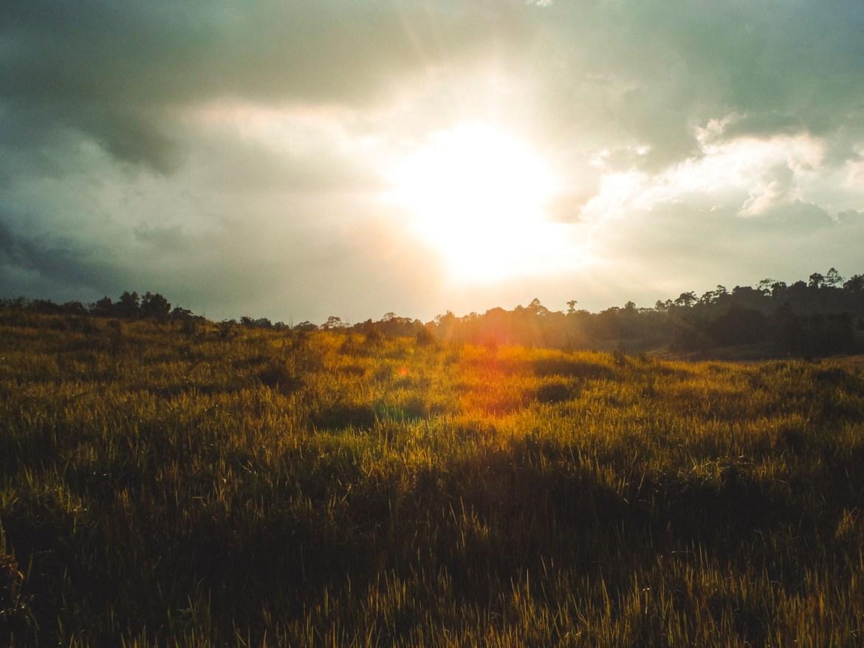 Sonnenuntergang im Khao Yai Nationalpark