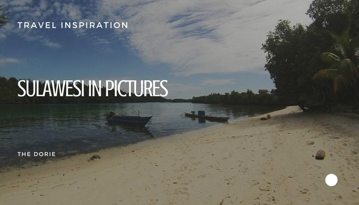 Sulawesi in pictures