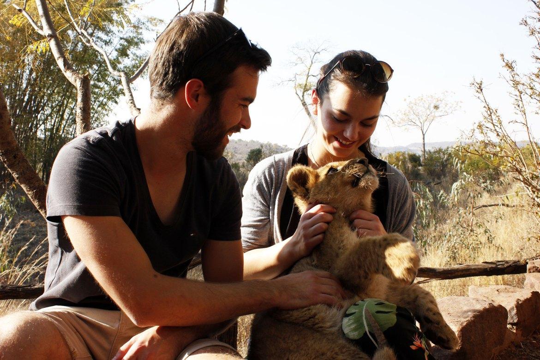 Timo und Dorie schmusen mit Babylöwen