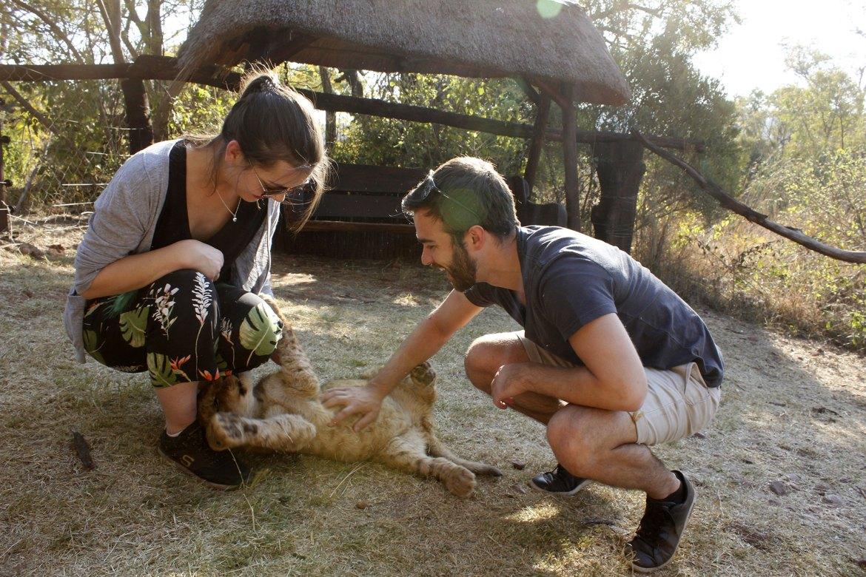 Dorie und Timo spielen mit Babylöwen