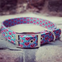 Beautiful Handmade Accessories For Your Dog