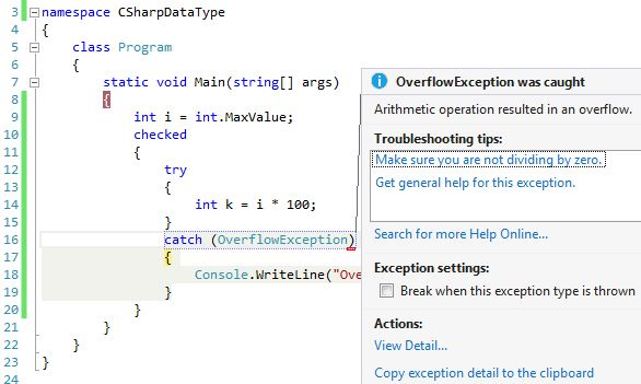 Data Type Overflow
