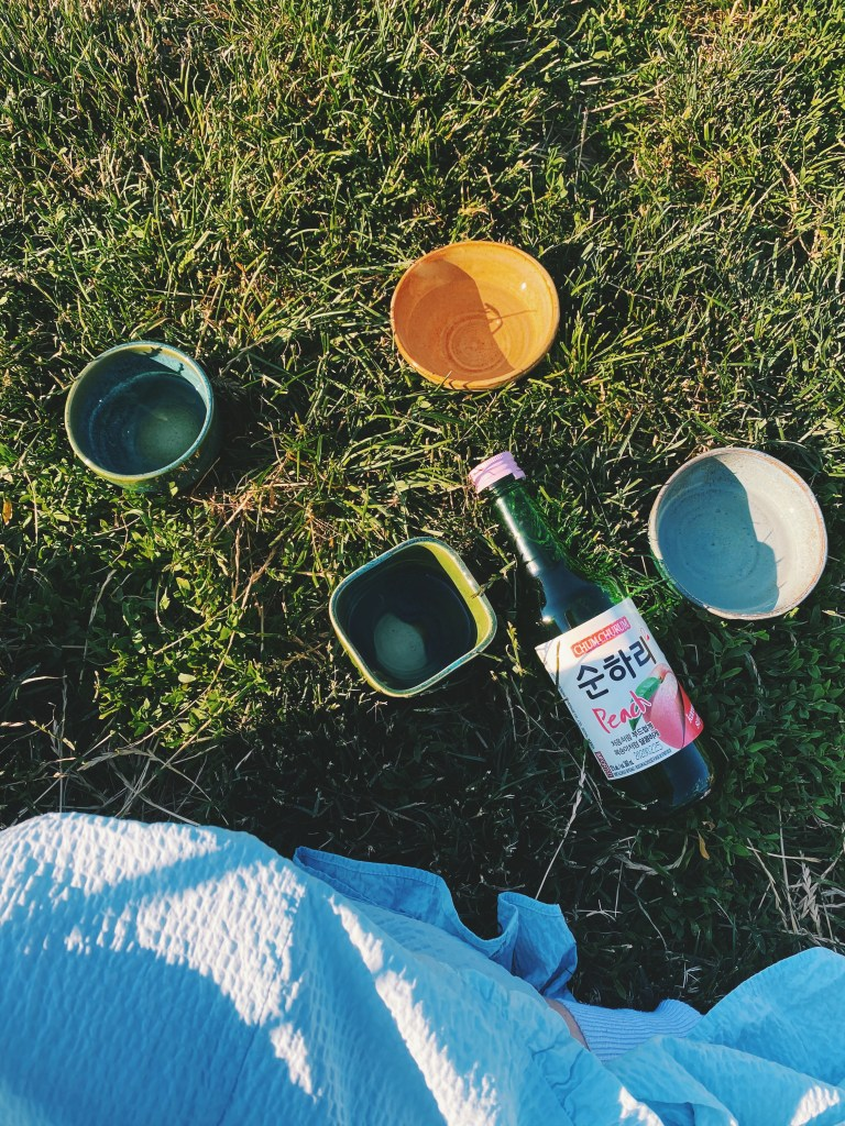 toronto soju in the park