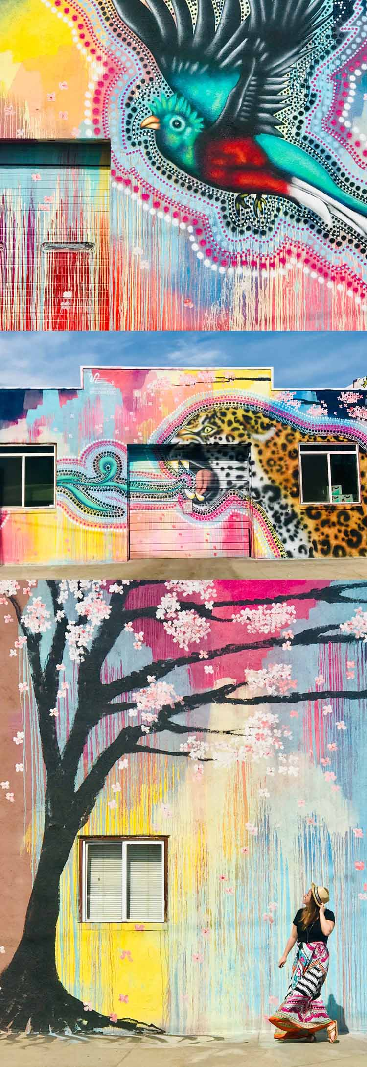Love photography? The Denver street art scene has exploded with murals and graffiti everywhere you turn. Here are the best ones to blow up the 'Gram and enjoy the art in colorful Colorado. Spoiler: it's one of the best things to do in Denver! #streetart #denver #colorado #usa #graffiti #art #travel #weekendgetaway
